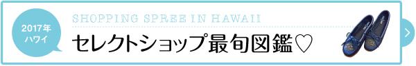 2017 ハワイ お土産 セレクトショップ 最旬 買い物 天国 ロゴ