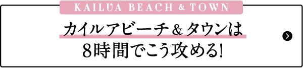 ハワイ おすすめ モデルプラン カイルア ビーチ タウン お土産 雑貨