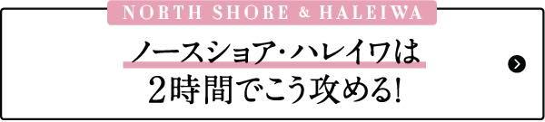 ハワイ おすすめ モデルプラン ノースショア ハレイワ ビーチ タウン お土産 雑貨