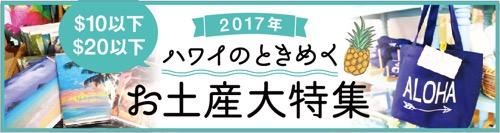 おみやげ お土産 ハワイ 2017 夏休み $10以下 $20以下 ときめく