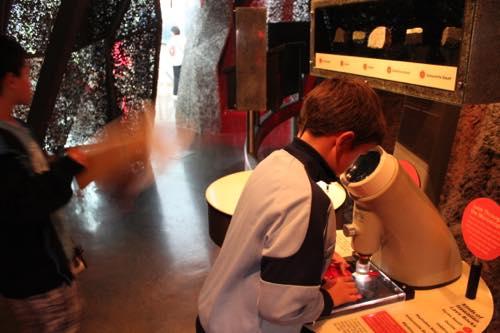 ビショップミュージアム サイエンスアドベンチャーセンター 博物館 子供の遊び場 ハワイ ホノルル
