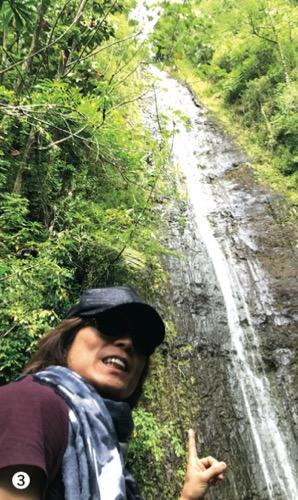 ハワイ 有名人 芸能人 つんく つんくさん マノアの滝