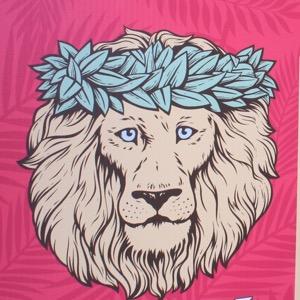 hawaii lion coffee new ハワイのライオンコーヒー 新しいライオン