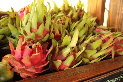 ハワイ ノースショア カフクファーム  ドラゴンフルーツ HAWAII NORTHSHORE KAHUKU FARM DRAGON FRUITE