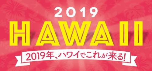 2019 ハワイ 流行5