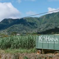 Mp2 Made in Hawaii, Ko Hana Rum・Hawaii・Waikiki・Tour