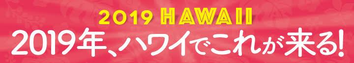 2019 ハワイ最新情報 ハワイでこれが来る!