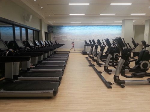 th_2-2-mandara-Kalia gym - 1