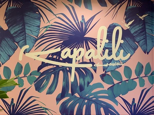 Kapalili hawaii shoko (6)