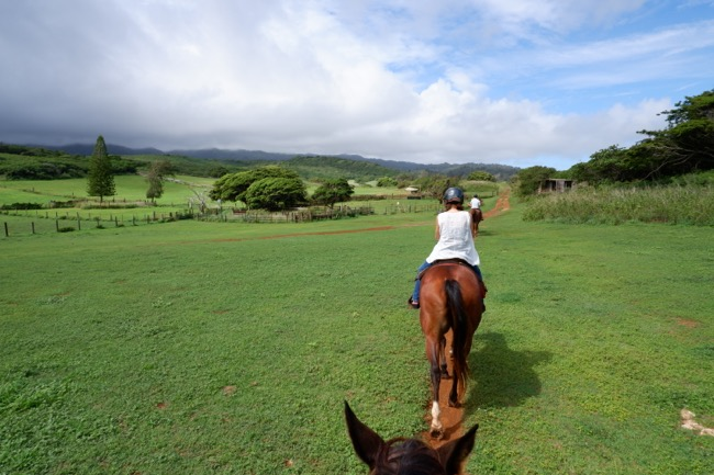 thgunstock ranch hawaii northshore oahu2