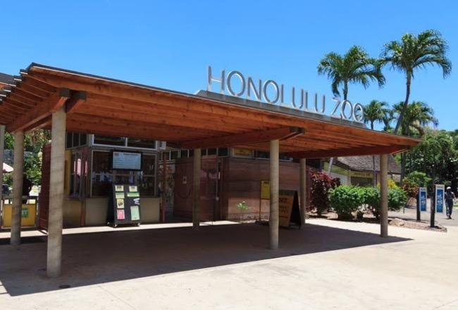 thhonolulu zoo hawaii waikiki