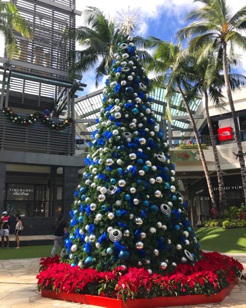 ハワイ クリスマスツリー クリスマス1th_