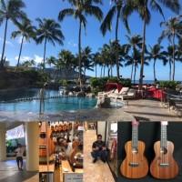 ハッピーアロハフライデー!この一週間、ハワイは最高の天気ですよ~